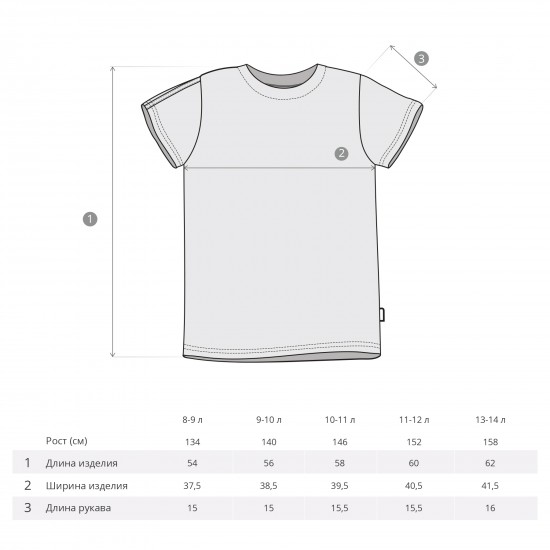 T-shirt All Divisions for boys, gray