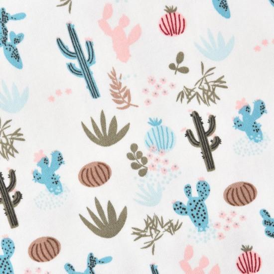 Bodijs kaktuss