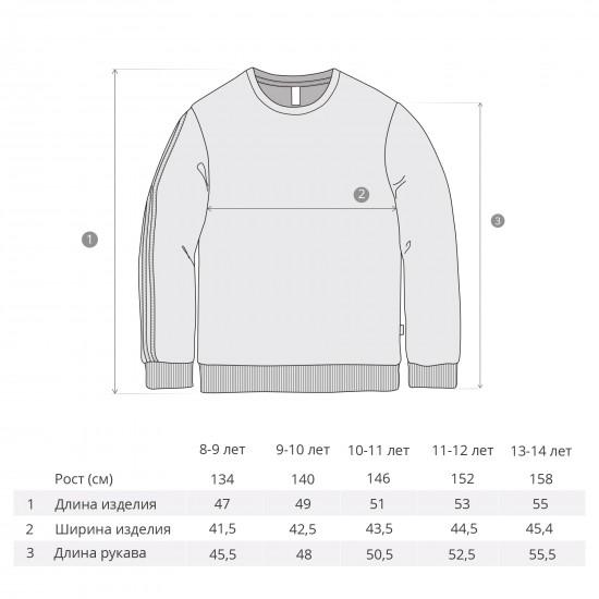 "Sweatshirt ""Sport"" for boys, gray"