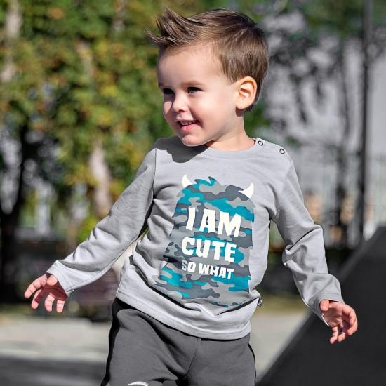 Krekls Frankie mazam zēnam, pelēks